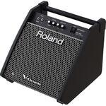 Roland PM-100 dobmonitor
