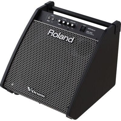 Roland PM-200 dobmonitor